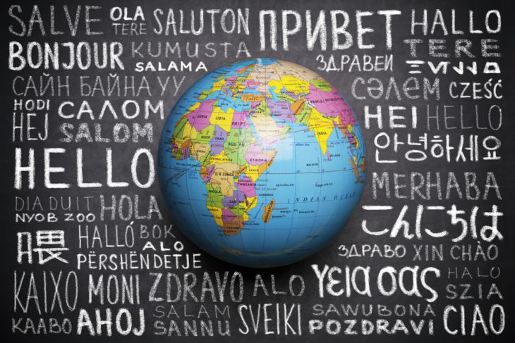 Key Questions to Ask When Choosing a Translator